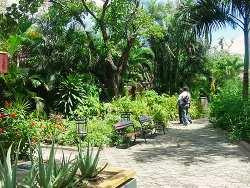 Horarios y precios del zoo zool gico de barranquilla Jardin botanico horarios y precios